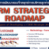 46. CRM Strategic Roadmap White Paper