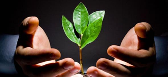 Managing Customer Service For Success EDISC