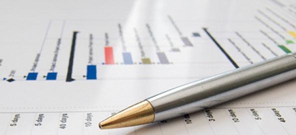 Strategic Business & IT Plan Presentation