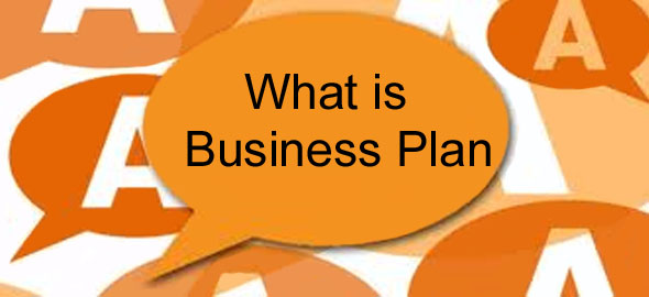 what is business plan