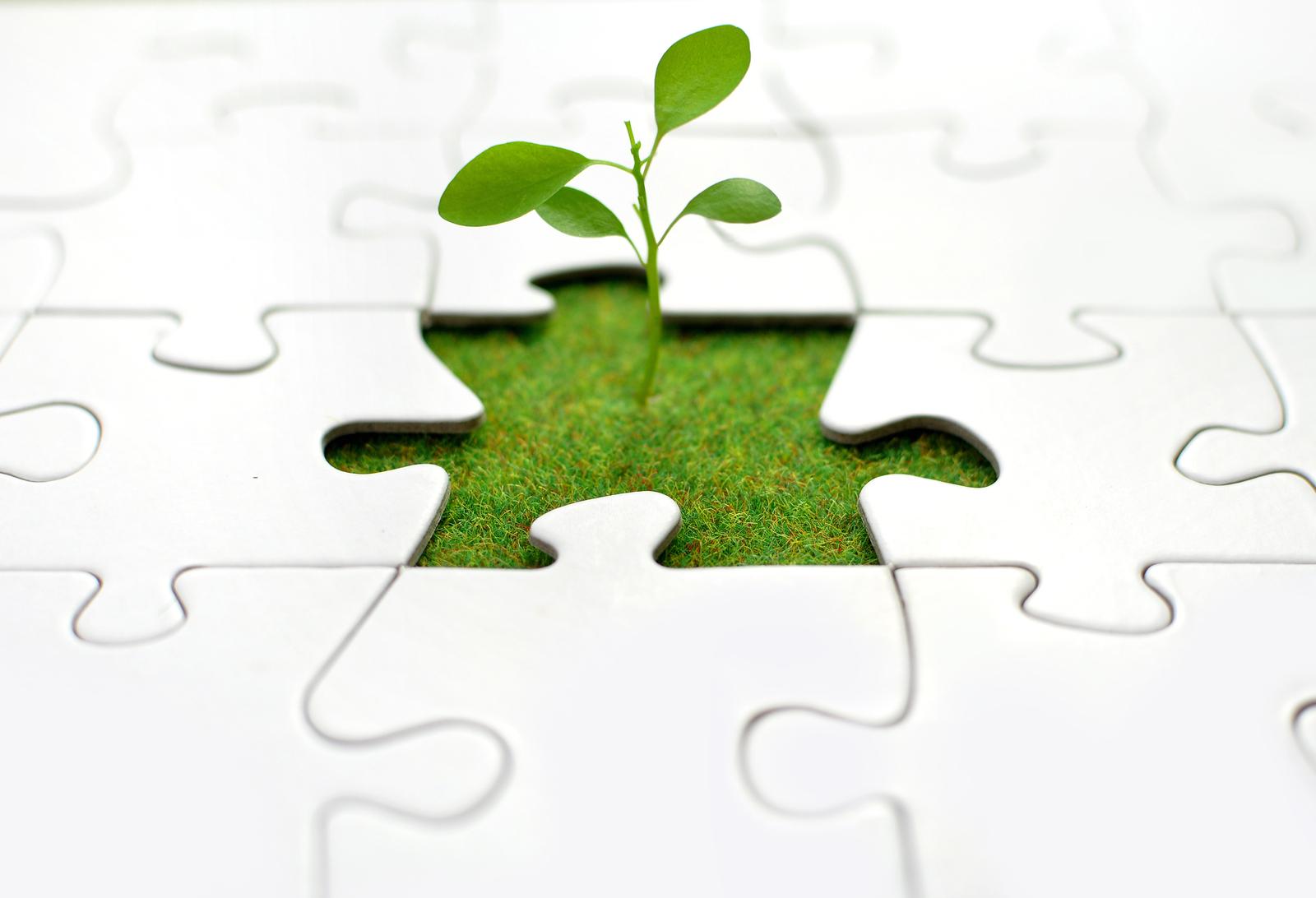 ebook Nachhaltigkeit in der